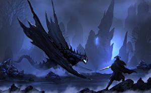 Фотография Воины Драконы