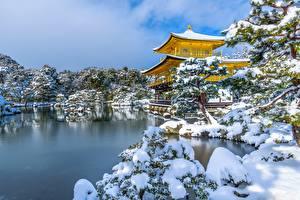 Фотографии Зима Пагоды Пруд Япония Снег Kyoko-chi Pond, Kinkaku-ji, Golden Pavilion Природа