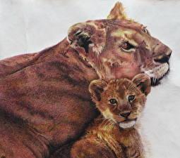 Картинки Большие кошки Львы Рисованные Детеныши 2 Животные