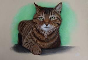 Обои Кошки Рисованные Смотрит Животные