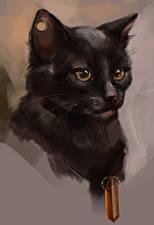 Обои Кошки Рисованные Голова Смотрит животное