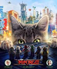 Обои Коты Взгляд Ниндзя The Lego Ninjago Movie (2017) Кино