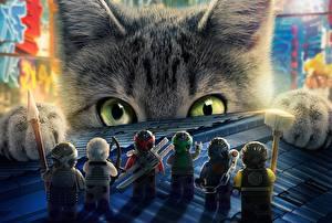Картинки Коты Ниндзя Взгляд The Lego Ninjago Мультики