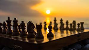 Фото Шахматы Рассветы и закаты Солнце