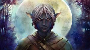Картинка Эльфы Мужчины Недовольство Ночные Луна