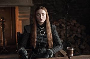 Фотография Игра престолов (телесериал) Шатенка Sansa Stark Девушки Знаменитости