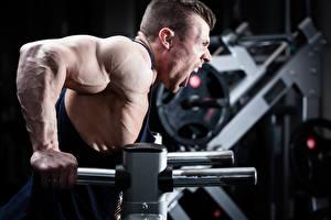 Фотографии Мужчина Бодибилдинг Мускулы Тренируется Кричат Спорт