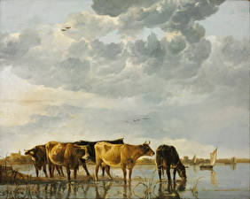 Фото Картина Корова Aelbert Cuyp, Cows in a River