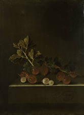 Фотография Картина Крыжовник Adriaen Coorte, A Sprig of Gooseberries on a Stone Plinth