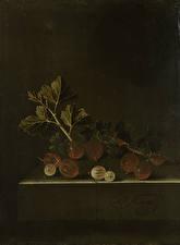 Фотография Картина Крыжовник Adriaen Coorte, A Sprig of Gooseberries on a Stone Plinth