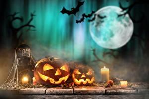 Фотография Прага Хэллоуин Тыква Свечи Летучие мыши Луна