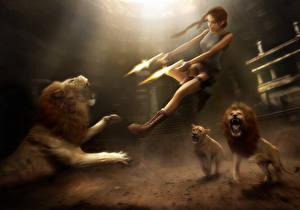 Картинки Tomb Raider Anniversary Пистолеты Львы Лара Крофт Прыжок Стрельба Девушки