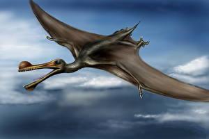 Фотографии Древние животные Динозавры Летящий Крылья Ornithocheirus Животные