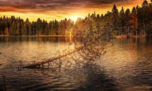 Картинки Осень Времена года Реки Леса Вечер Деревья Природа