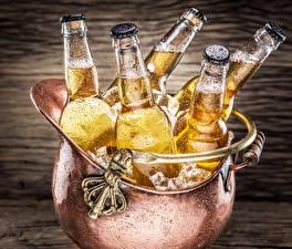 Обои Пиво Напитки Бутылка Льда Пища