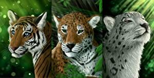 Обои Большие кошки Рисованные Тигры Ирбис Леопарды Трое 3