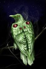 Фотографии Птицы Волшебные животные
