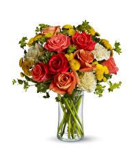 Картинка Букеты Розы Гвоздики Хризантемы Белый фон Ваза