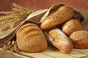 Фотографии Хлеб