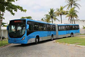 Картинки Автобус Голубой 2015-17 Marcopolo Torino Express Articulado Авто