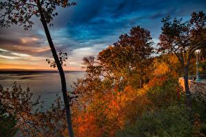 Картинка Канада Осенние Парк Небо Квебек Дерева Кустов Природа