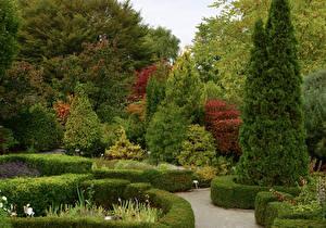 Обои Канада Сады Ель Деревья Кусты Toronto Botanical Gardens