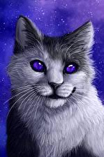 Картинка Коты Рисованные Усы Вибриссы Смотрит Животные