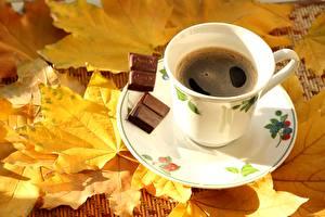 Картинки Кофе Шоколад Чашка Блюдце Листва Продукты питания