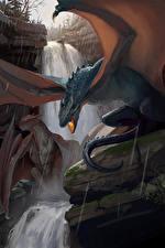 Фотография Драконы Водопады Дождь Фантастика