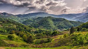 Обои Поля Леса Сербия Холмы Облака Bajina Bauta Zlatibor