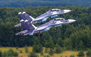 Картинки Самолеты Истребители Су-30 Российские Двое SM