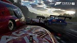 Фотографии Forza Motorsport 7 Ралли