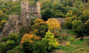 Картинка Германия Замки Осенние Деревья Скала Marksburg Castle