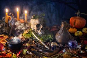 Фотографии Праздники Хеллоуин Свечи Тыква Черепа Кувшин Листва Книга
