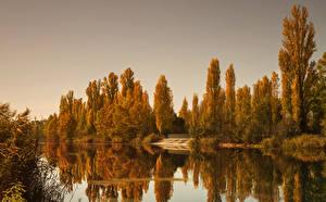 Картинка Италия Реки Осень Деревья Отражение Salionze Природа