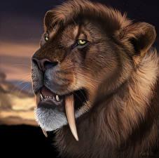 Фотография Рисованные Клыки Древние животные Морда Machairodontinae Животные