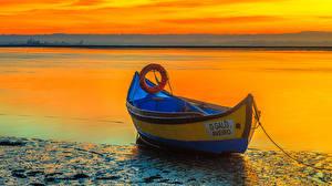Фотографии Португалия Берег Рассветы и закаты Лодки Реки Aveiro Природа