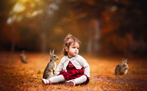 Фотографии Кролики Девочки Сидит