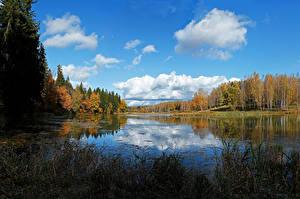 Картинки Россия Осень Речка Лес Небо Облако Abramtzevo Природа