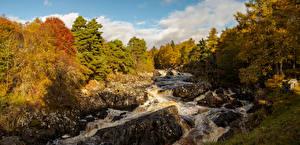 Фотографии Шотландия Осенние Реки Леса Камни Водопады River Cassley