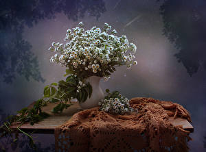 Фото Натюрморт Букеты Ромашки Много Ваза Цветы