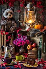 Фотография Натюрморт Керосиновая лампа Плюшевый мишка Астры Яблоки Кофе Тыква Чашка Пища