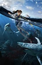 Фотографии Tomb Raider Underworld Вода Акулы Лара Крофт Игры Девушки