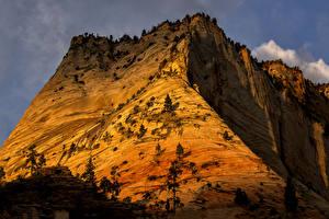 Фотография Зайон национальнай парк США Горы Парк Природа