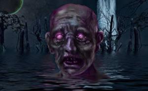 Обои Зомби Голова Фантастика