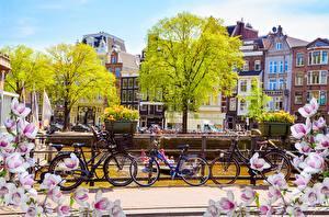 Фотография Амстердам Нидерланды Весна Велосипед Города