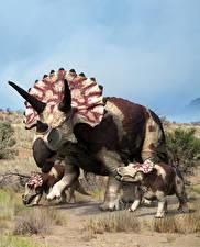 Картинки Древние животные Динозавры Детеныши Triceratops Животные