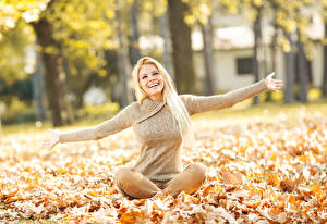 Картинки Осенние Блондинка Сидящие Листва Свитер Руки Улыбка Девушки