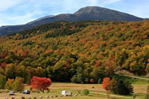 Картинка Осенние Леса Холмы Деревья