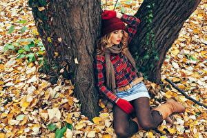 Фото Осень Ствол дерева Сидящие Шапки Шатенка Взгляд Листья Девушки